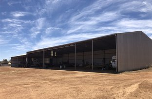 Picture of Narembeen WA 6369