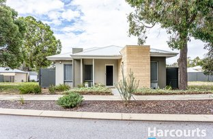 Picture of 38 Whimbrel Crescent, Coodanup WA 6210