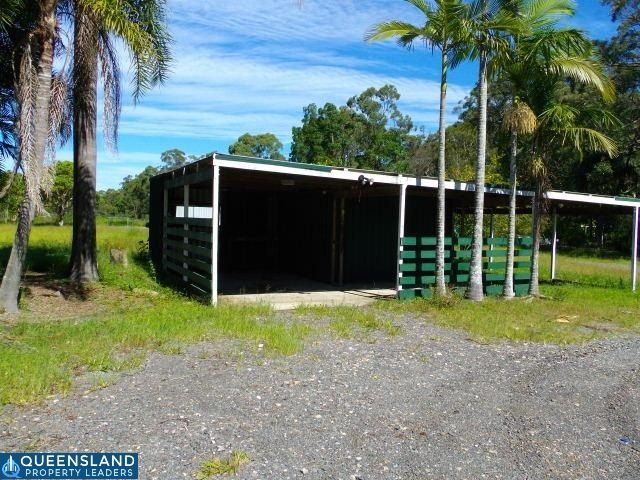 31 Conifer Road, Morayfield QLD 4506, Image 1