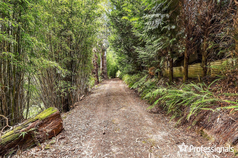 79 Wiseman Road, Silvan VIC 3795, Image 1