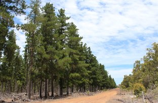 Picture of Frankland WA 6395