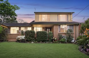 Picture of 23 Warili Road, Frenchs Forest NSW 2086