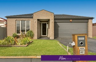 Picture of 43 Ebony Street, Cranbourne VIC 3977