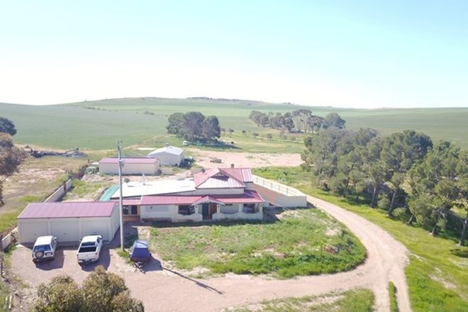 Picture of 44 Mckenzie Rd, CALTOWIE WEST SA 5490