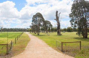 Picture of 507 Manear Road, Rosa Brook WA 6285