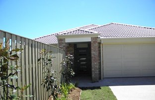 Picture of 257 Gannon Way , Upper Coomera QLD 4209