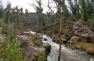 Picture of 338D Elliott Way, Tumbarumba NSW 2653
