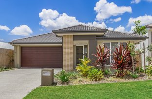 Picture of 10 Gordon Street, Ormeau Hills QLD 4208