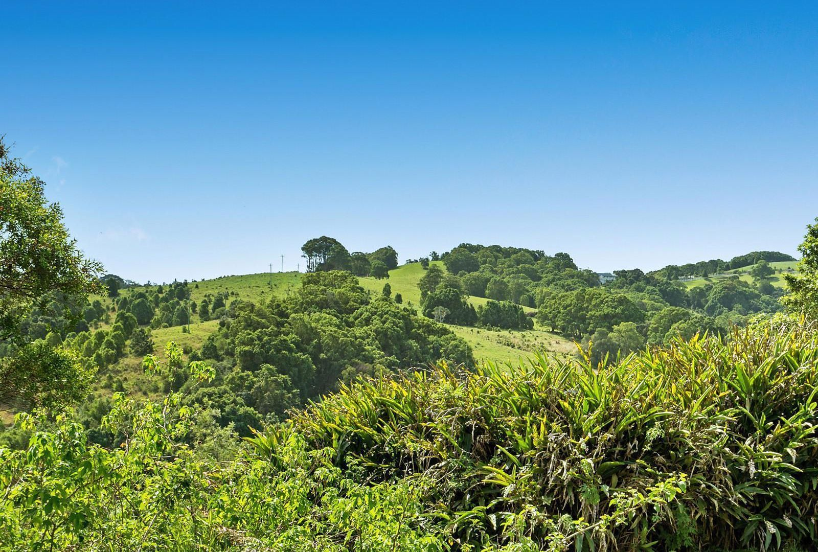 Proposed Lot 245 Granuaille Crescent, Bangalow NSW 2479, Image 1