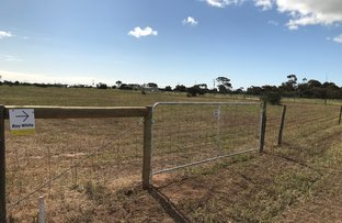 Picture of Lot 12 Haselgrove Road, Kadina SA 5554