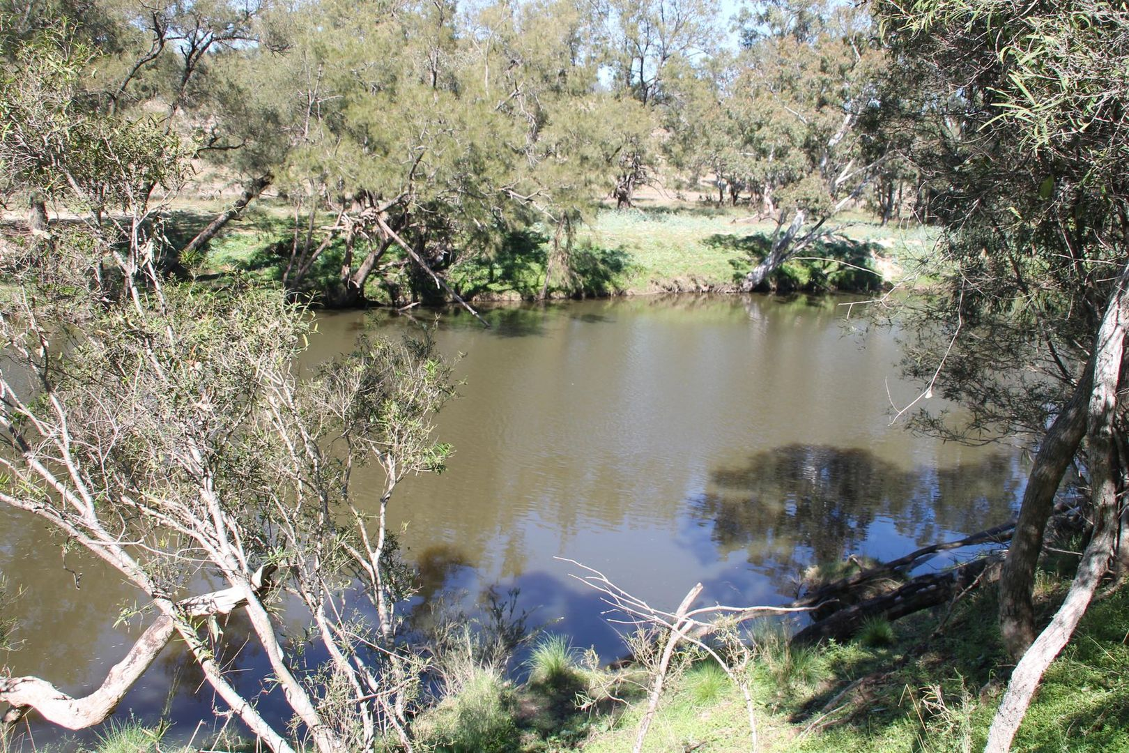Lot 7 Gibraltar Road, Tenterfield NSW 2372, Image 1