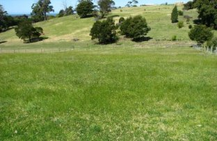 Picture of Lot 19 Angophora Drive, Mallacoota VIC 3892