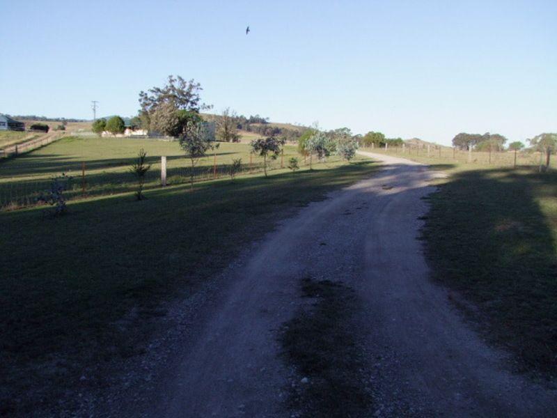 146A Falbrook Road, Falbrook, Singleton NSW 2330, Image 0
