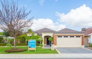 Picture of 16 Lucida Road, Southern River WA 6110