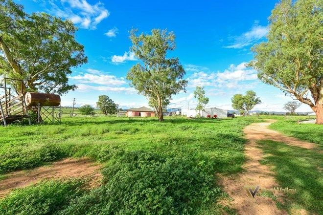 Picture of 821 Wallamore Road, WALLAMORE NSW 2340