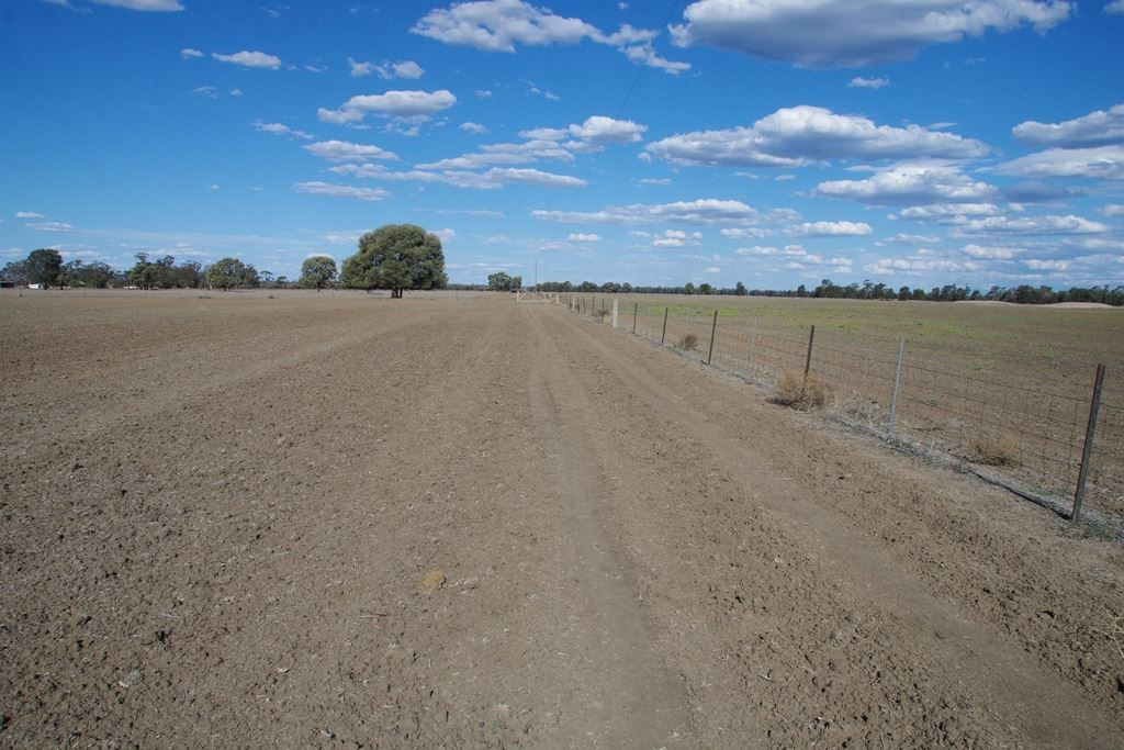 497 Nuable Road, Narrabri NSW 2390, Image 1