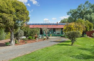 Picture of 14 Church Street, Newstead VIC 3462