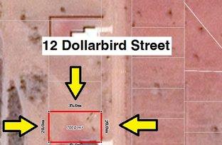 12 Dollarbird Street, Derby WA 6728