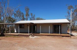 Picture of WLL 14637 Baroona Hill, Lightning Ridge NSW 2834