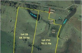 Picture of Jabiru East 639 Lagoon Road, Coraki NSW 2471