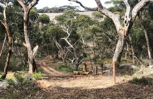 Picture of Allotment 101 Hundred of Stokes, Tumby Bay SA 5605