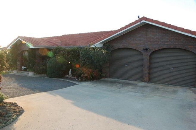 Picture of 141 Aerodrome Road, APPLETHORPE QLD 4378