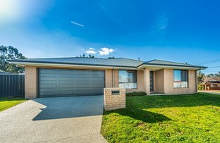Picture of 4 Ellora Court, Lavington NSW 2641