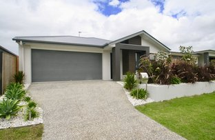 Picture of 49 Azure Way, Pimpama QLD 4209