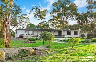 Picture of 500 Clunes Evansford Road, Evansford VIC 3371