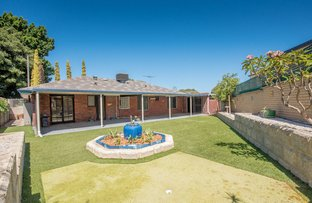 Picture of 36 Kanimbla Way, Morley WA 6062