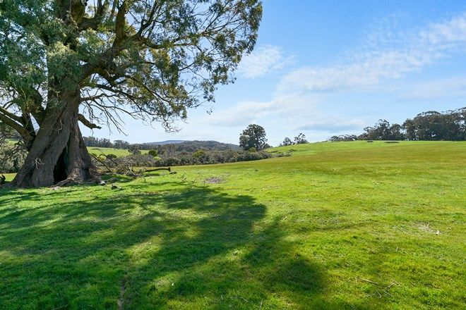 Picture of 0 McGearys Road, BOHO SOUTH VIC 3669