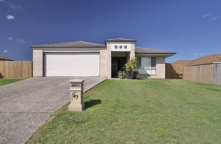 Picture of 47 Banksia Drive, Raceview QLD 4305