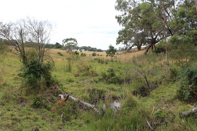 Lot 2C Strathdownie-Digby Road, Digby VIC 3309, Image 2