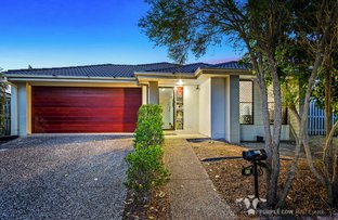 Picture of 21 Quinn Cl, Augustine Heights QLD 4300