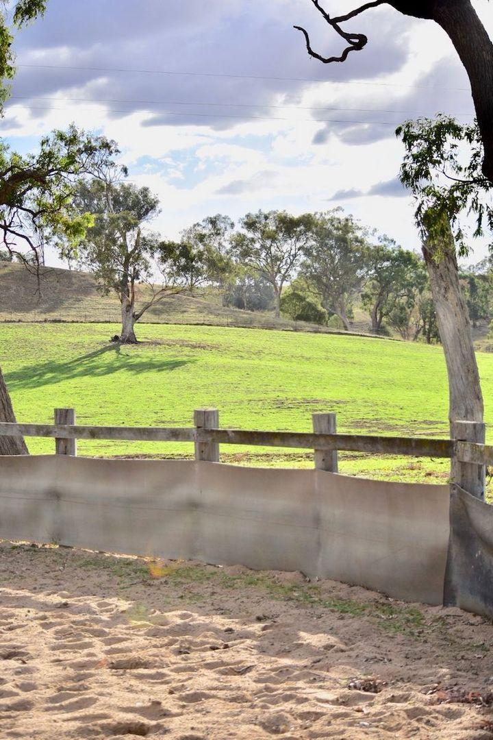 CARINYA/618 Monteray Road, Loomberah NSW 2340, Image 2