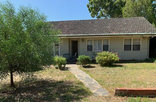Picture of 13 Koongarra Avenue, Magill SA 5072