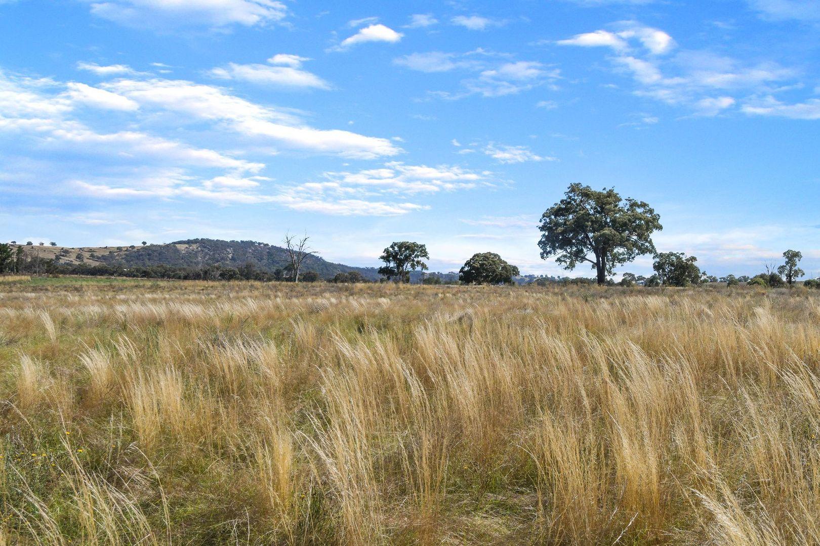 191 Mount Rankin Road, Mount Rankin NSW 2795, Image 2