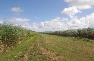 0 Read Road, Proserpine QLD 4800