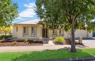 Picture of 2 Frome Crescent, Mawson Lakes SA 5095