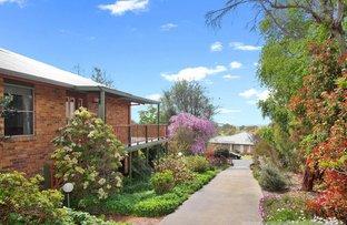 59 The Avenue, Armidale NSW 2350