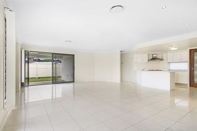 Picture of 26 Barramul Place, THORNLANDS QLD 4164