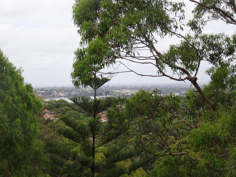 20/272 Pacific Highway, Artarmon NSW 2064, Image 0