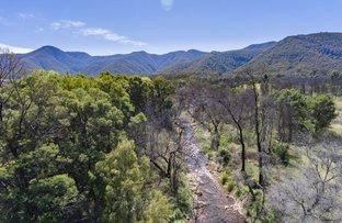 Picture of 494 Yankees Gap Road, Bemboka NSW 2550
