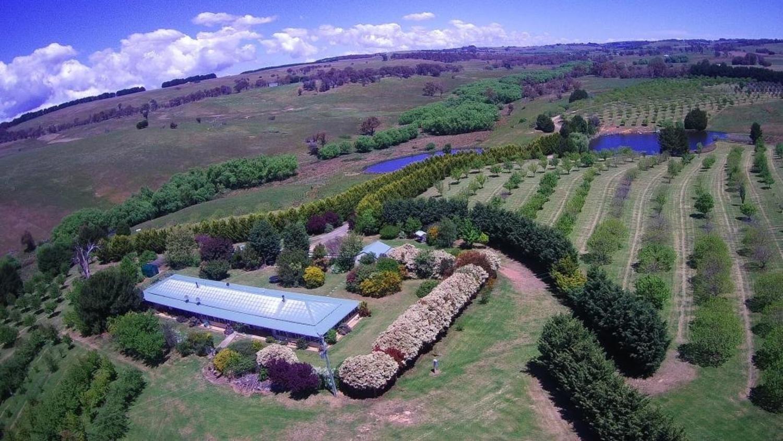 Ilma 528 Peelwood Road, Laggan NSW 2583, Image 0