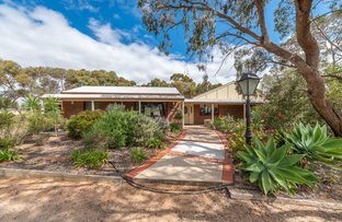 Picture of 10 Bungana Drive, Murray Bridge East SA 5253