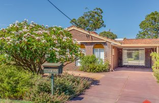 Picture of 13 Haynes Court, Armadale WA 6112