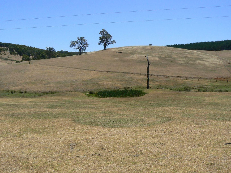 194 Preston Road, Thomson Brook WA 6239, Image 2