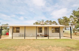Picture of 25 North Street, Bribbaree Via, Young NSW 2594