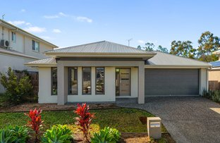 Picture of 19 Mcpherson Crescent, Coomera QLD 4209