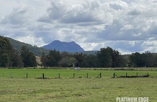 Picture of 10667 Mount Lindesay Hwy, Palen Creek QLD 4287
